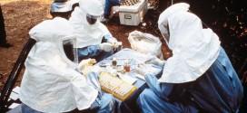 Ebola, la sanità veneta si è preparata per la prevenzione e la cura