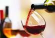 Vicenza, si presenta alla Vigna il Testo unico del vino