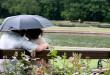 Torna il maltempo con temporali e grandine