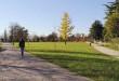 Vicenza, confermato il luna park a Campo Marzo