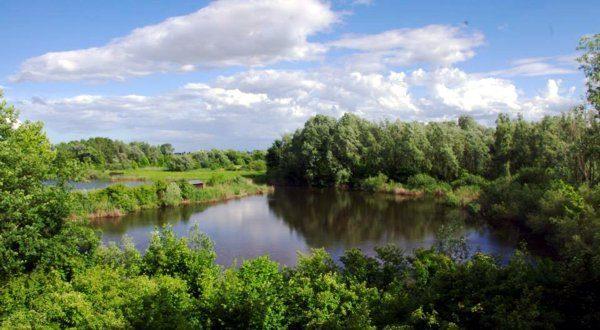 Lo stagno principale dell'oasi di Casale, a Vicenza