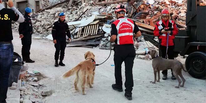 """Terremoto, lutto nazionale nella """"povera Italia"""""""