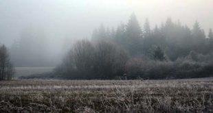 freddo-gelo-nebbia