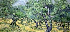 Vincent Van Gogh - Uliveto (1853)