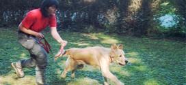L'istruttore Lara Morosini con il suo cane Ice