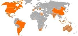 Distribuzione nel mondo delle coltivazioni Ogm