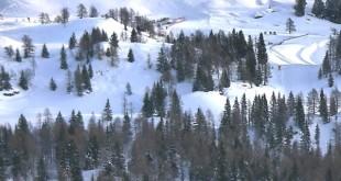 L'area del passo Brocon in Trentino