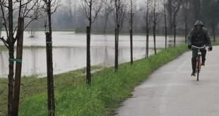 Rischio idraulico, campi allagati a causa delle piogge a Vicenza