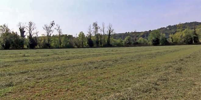 Parte dell'area dove sorgerà la cassa di espansione di Costabissara