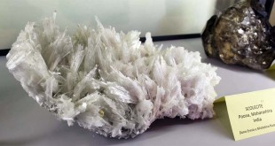 Un campione di solecite, esposto nel settore mineralogico del Museo Zannato di Montecchio Maggiore