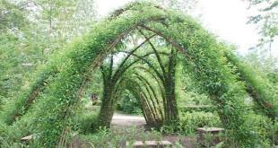 Ecco il gazebo che verrà realizzato al centro dei giardini
