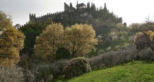 Il Castello di Marostica (vista dalla strada dei frati) - Archivio Comunale