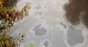 Il nuovo sversamento di idrocarburi nel fiume Retrone