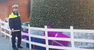 Accanto all'albero di Natale danneggiato, Claudio Sartori, responsabile dell'ufficio di polizia giudiziaria del comando intercomunale di polizia locale del bassanese