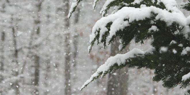 Maltempo, in arrivo la neve anche a bassa quota