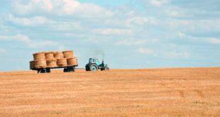 Sono stati molti, nell'ultimo anno, gli incidenti sul lavoro in agricoltura (Foto d'archivio)