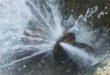 Vicenza, rubinetti a secco per lavori all'acquedotto