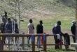 Migranti a Vicenza, istanza a Rucco da PrimaNoi