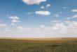 Inquinamento da ozono, altro nemico estivo