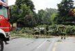 Maltempo, danni a Vicenza e nell'hinterland