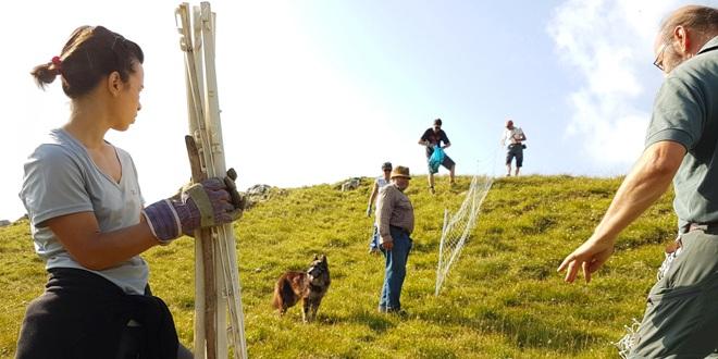 Volontari del Cai al lavoro sull'altopiano di Asiago
