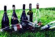 Campo Marzo, stop vendita alcolici in due negozi
