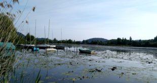 Il lago di Fimon, ad Arcugnano, teatro dell'episodio che ha portato all'allontanamento da casa del 42enne