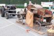 Bressanvido, torna il Festival dell'Agricoltura