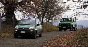 Caccia, i carabinieri intensificano i controlli