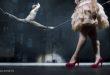 """Vicenza, c'è il """"Night Circus"""" al Teatro Comunale"""