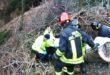 Lusiana, muore 60enne schiacciato da un albero
