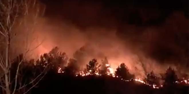 L'incendio, questa notte, sul Grappa (Foto tratta dalla pagina Facebook Meteo Bassano e Pedemontana del Grappa)
