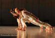 """Danza in Rete si apre con """"Le Quattro Stagioni"""""""