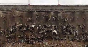 Montecchio Maggiore, discarica abusiva sotto la Pedemontana
