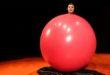 """Vicenza, """"Il circo dei folli"""" al Teatro Spazio Bixio"""