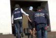 Vicenza, arrestato il ladro acrobata