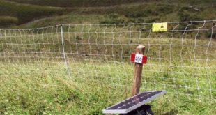 La rete elettrificata fornita dalla Regione Veneto contro le predazioni dei lupi