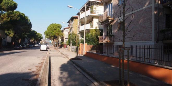 Entro la primavera, in via Rossini, sarà ultimata la collocazione di 26 nuovi alberi