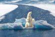 Marano si impegna contro i cambiamenti climatici