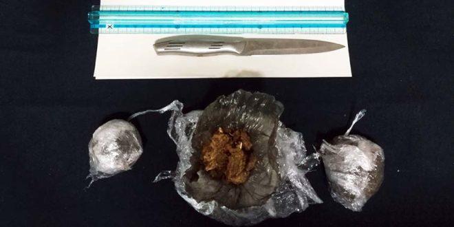 Vicenza, il fiuto di Buddy trova un etto di marijuana