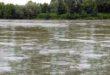 Pfas di nuova generazione anche nel fiume Po