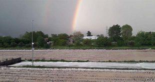 La grandine fa danni alle colture, soprattutto al mais