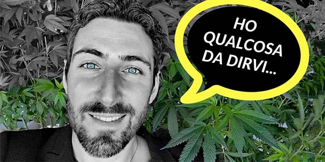 Siti di incontri di cannabis UK