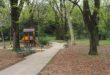 """Smog, Coldiretti: """"Serve più verde nelle città"""""""