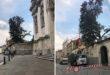 Vicenza, perché tagli sugli alberi monumentali?