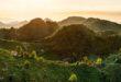 Le Colline del Prosecco sono Patrimonio Unesco