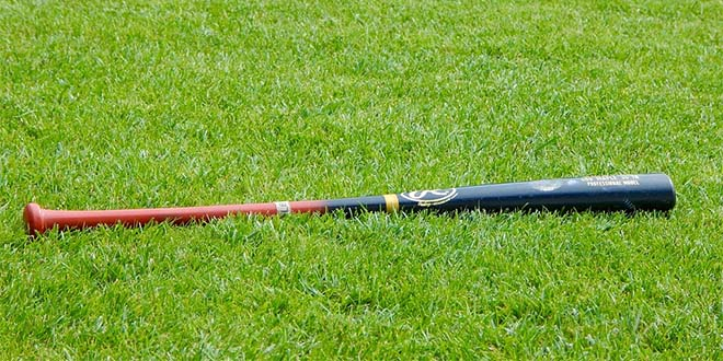 Una mazza da baseball può essere un'arma micidiale... (Immagine di repertorio)