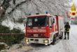 Cade albero per la neve. Vigili del fuoco risolvono