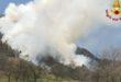 Incendio brucia 20 ettari di bosco