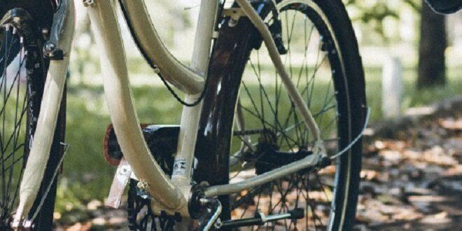 due bici rubate